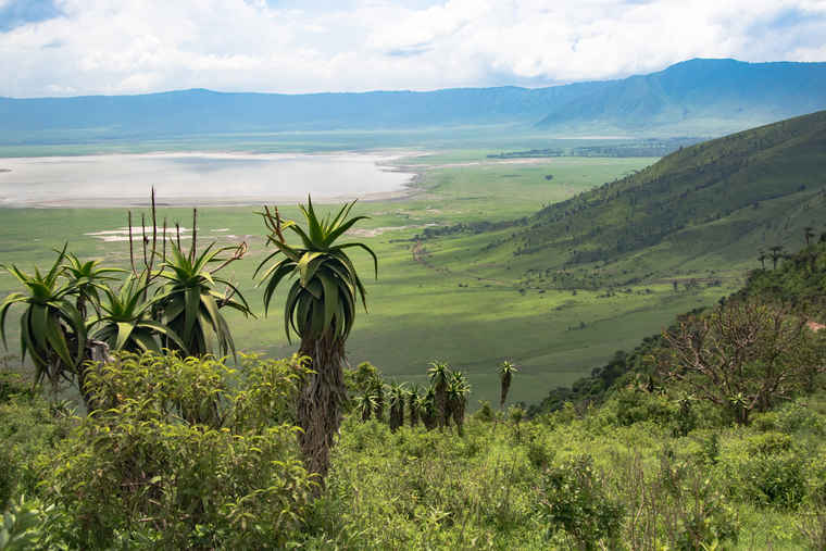 Ngorongoro Crater, Compare tours Tanzania